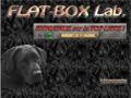 Formation aux arts graphiques avec flatboxlab.com